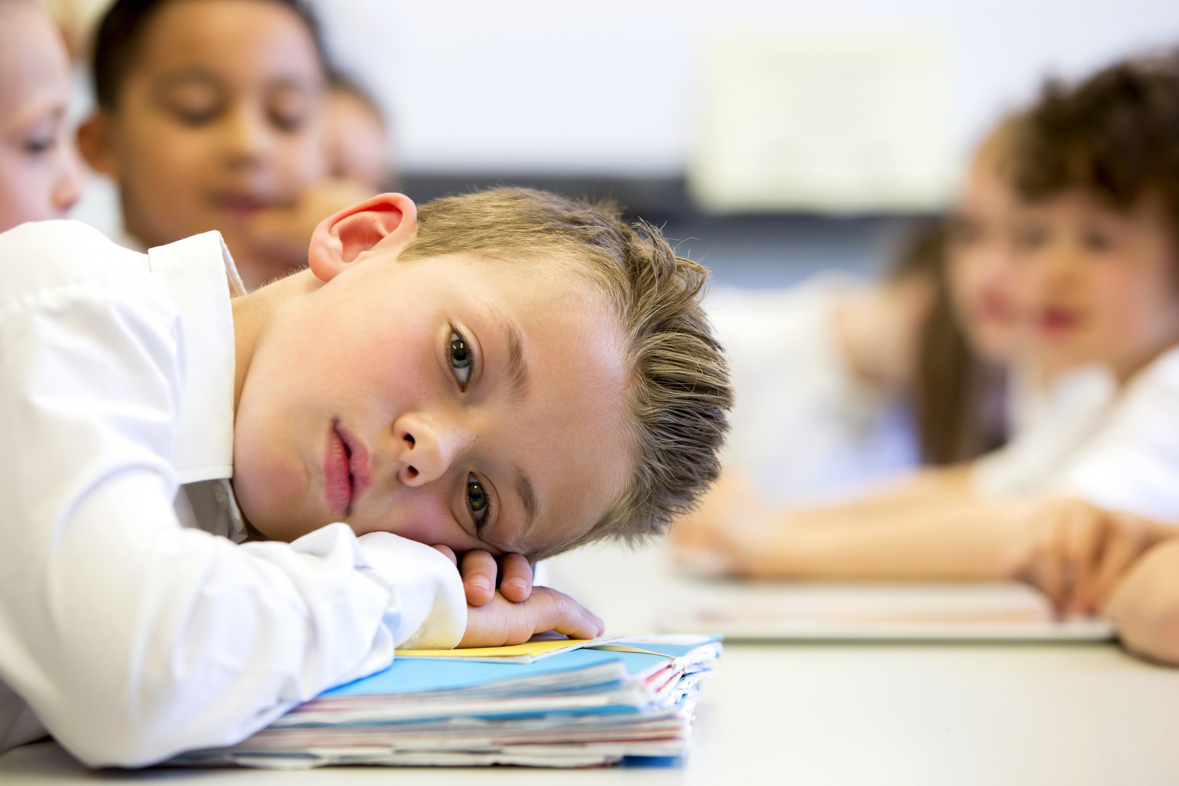 Signs Your Child is Struggling in School